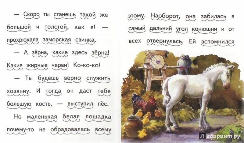 Иллюстрация 1 из 16 для Про белую лошадку - Елена Ермолова   Лабиринт - книги. Источник: Лабиринт