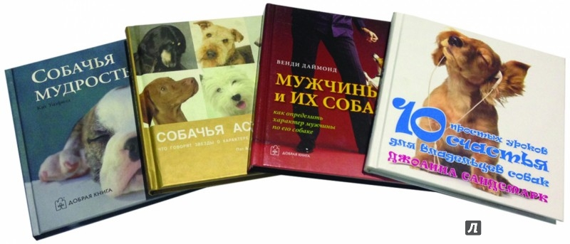 Иллюстрация 1 из 42 для Наши лучшие книги о собаках. Комплект из 4-х книг - Сандсмарк, Даймонд, Гринолл, Джейвор, Уитфилд | Лабиринт - книги. Источник: Лабиринт