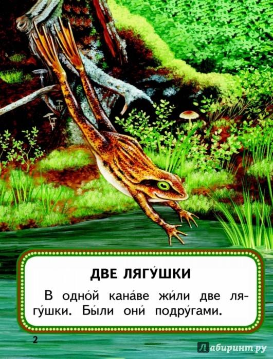Иллюстрация 1 из 24 для Кощей Бессмертный | Лабиринт - книги. Источник: Лабиринт