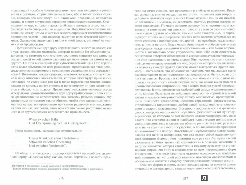 Иллюстрация 1 из 5 для Избранное. Философия культуры - Георг Зиммель | Лабиринт - книги. Источник: Лабиринт