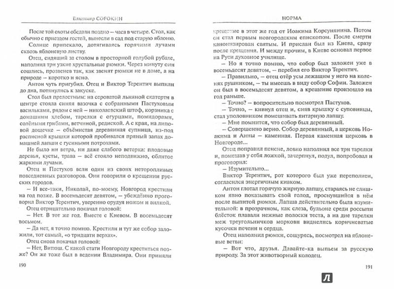 Иллюстрация 1 из 8 для Норма - Владимир Сорокин | Лабиринт - книги. Источник: Лабиринт