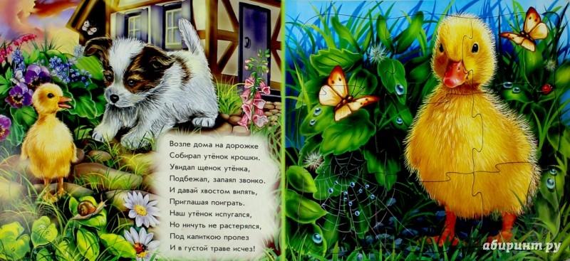 Иллюстрация 1 из 15 для Мои милые друзья - Евгений Новицкий | Лабиринт - книги. Источник: Лабиринт