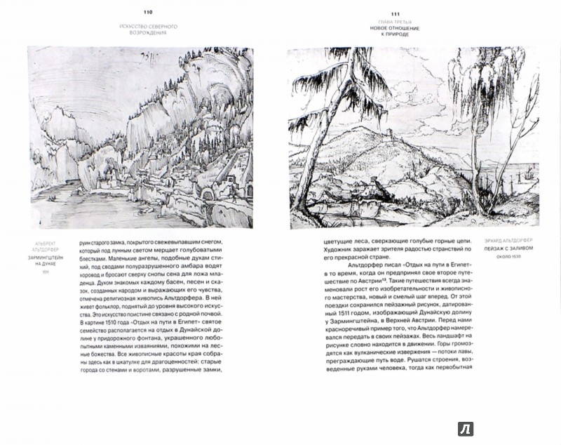 Иллюстрация 1 из 17 для Искусство Северного Возрождения. Духовные и интеллектуальные движения - Отто Бенеш | Лабиринт - книги. Источник: Лабиринт