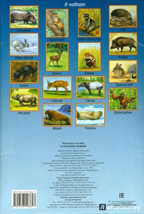 Иллюстрация 1 из 3 для Наглядное пособие А4. Млекопитающие | Лабиринт - книги. Источник: Лабиринт