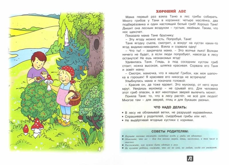 Иллюстрация 1 из 7 для Опасные предметы - Н. Евдокимова | Лабиринт - книги. Источник: Лабиринт