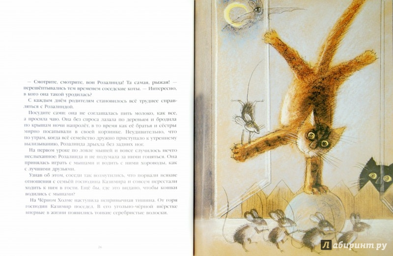 Иллюстрация 1 из 33 для История про кошку Розалинду, непохожую на других - Петр Вилкон | Лабиринт - книги. Источник: Лабиринт