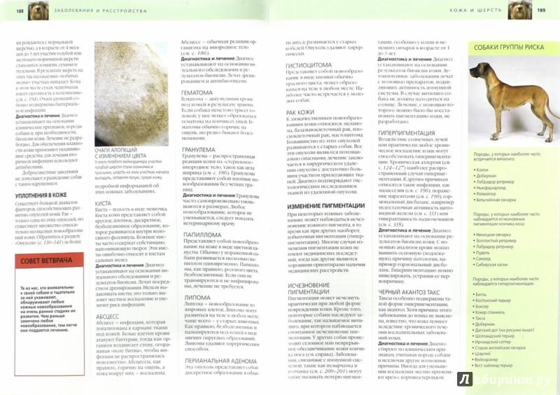 Иллюстрация 1 из 19 для Забота о вашей собаке. Полное руководство по уходу за вашей собакой - Брюс Фогль | Лабиринт - книги. Источник: Лабиринт