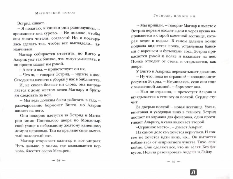 Иллюстрация 1 из 31 для Магический посох - Ларссон, Корсел | Лабиринт - книги. Источник: Лабиринт