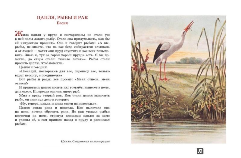 Иллюстрация 1 из 22 для Моя вторая русская книга для чтения - Лев Толстой | Лабиринт - книги. Источник: Лабиринт