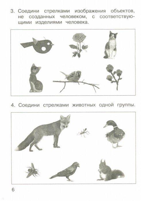Иллюстрация 1 из 10 для Окружающий мир. 1 класс. Проверочные работы в тестовой форме - Чуракова, Кудрова | Лабиринт - книги. Источник: Лабиринт