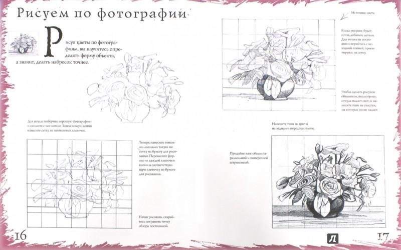 Иллюстрация 1 из 7 для Как рисовать. Цветы - Марк Берджин | Лабиринт - книги. Источник: Лабиринт