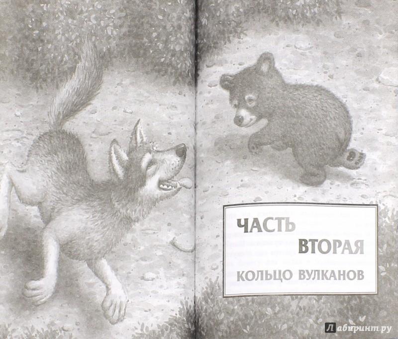 Иллюстрация 1 из 17 для Страж - Кэтрин Ласки | Лабиринт - книги. Источник: Лабиринт