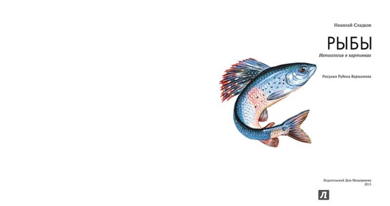 Иллюстрация 1 из 50 для Рыбы - Николай Сладков | Лабиринт - книги. Источник: Лабиринт