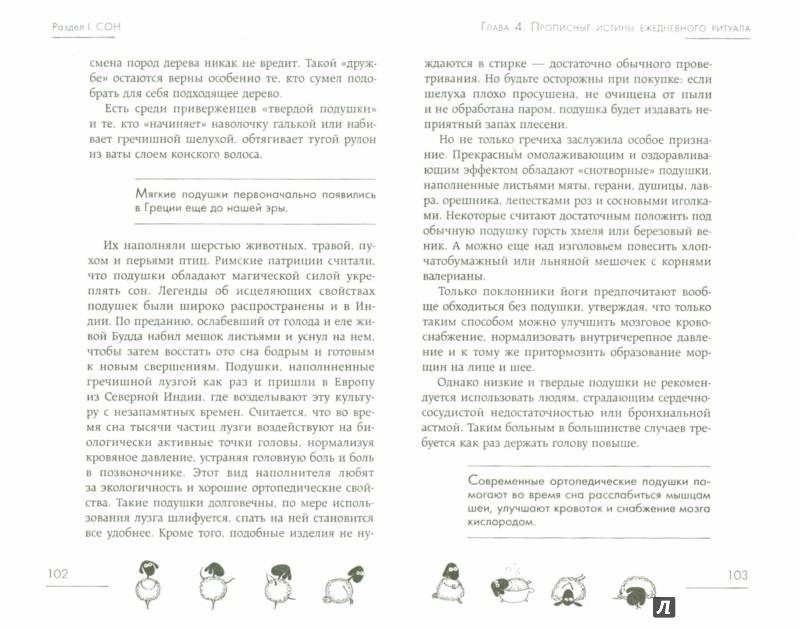 Иллюстрация 1 из 12 для Сон без бессонницы. Как высыпаться и быть бодрым каждый день - Юлия Кириллова | Лабиринт - книги. Источник: Лабиринт