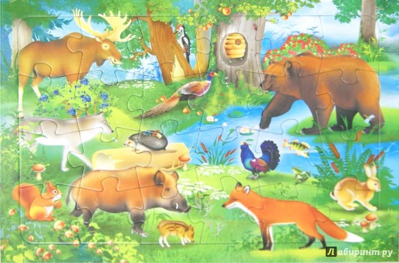 Иллюстрация 1 из 7 для Пазл. В лесу. 24 детали | Лабиринт - игрушки. Источник: Лабиринт