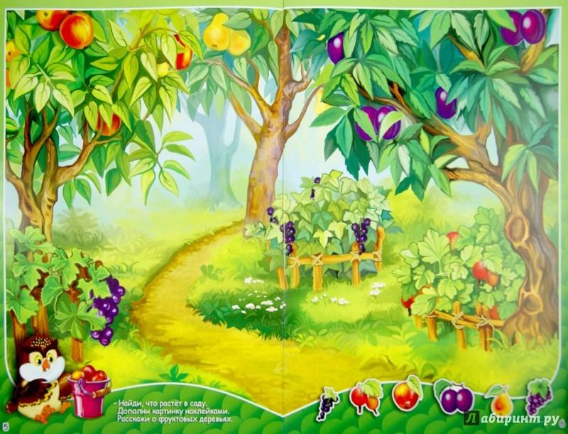Иллюстрация 1 из 7 для Что где растет. Многоразовые наклейки | Лабиринт - книги. Источник: Лабиринт