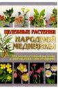 Лавренов Владимир Каллистратович Целебные растения народной медицины. 2-е изд.