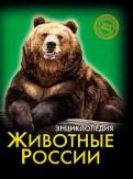 Хочу знать. Животные России
