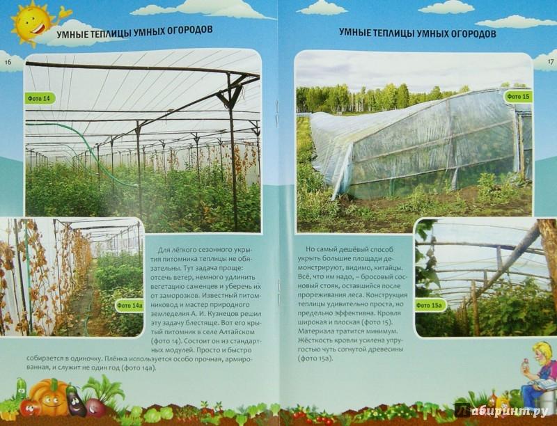 Иллюстрация 1 из 6 для Умные теплицы умных огородов - Николай Курдюмов | Лабиринт - книги. Источник: Лабиринт
