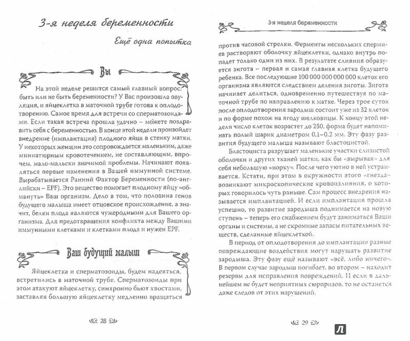 Иллюстрация 1 из 8 для Мама и малыш. Лучшая книга о беременности и родах. Новый гид по беременности - Афанасьев, Фильцева | Лабиринт - книги. Источник: Лабиринт