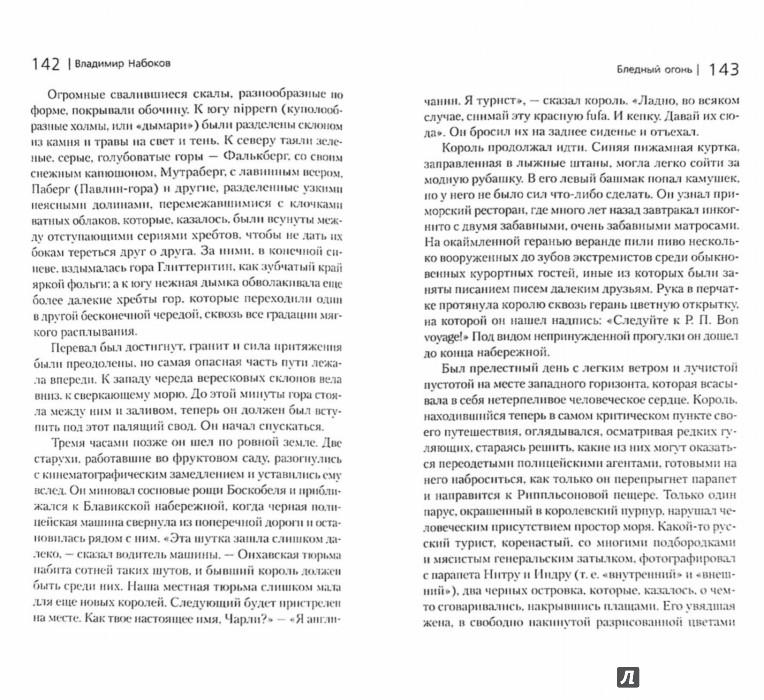 Иллюстрация 1 из 28 для Бледный огонь - Владимир Набоков | Лабиринт - книги. Источник: Лабиринт