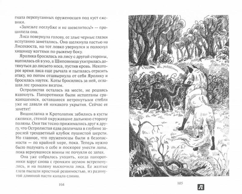 Иллюстрация 1 из 18 для Нерассказанные истории. История Остролистой - Эрин Хантер | Лабиринт - книги. Источник: Лабиринт