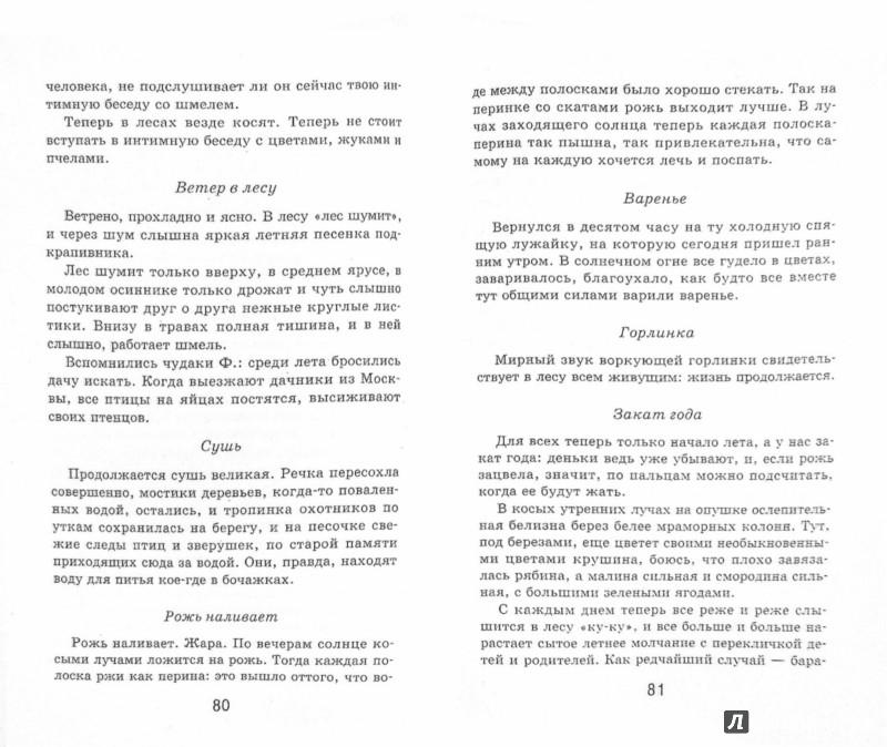 Иллюстрация 1 из 9 для Кладовая солнца - Михаил Пришвин | Лабиринт - книги. Источник: Лабиринт