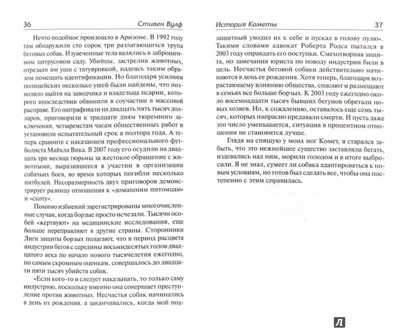 Иллюстрация 1 из 16 для История Кометы. Как собака спасла мне жизнь - Падва, Вулф | Лабиринт - книги. Источник: Лабиринт