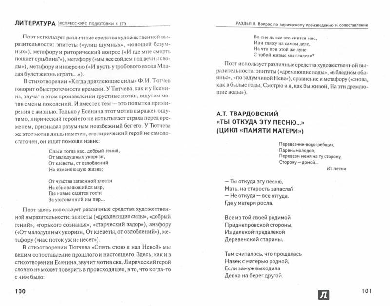 Иллюстрация 1 из 24 для Литература. Экспресс-курс подготовки к ЕГЭ - Елена Амелина | Лабиринт - книги. Источник: Лабиринт