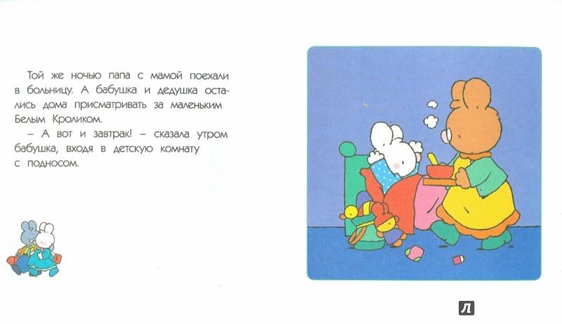 Иллюстрация 1 из 11 для Маленький Белый Кролик и младшая сестра - Флури, Буанар | Лабиринт - книги. Источник: Лабиринт