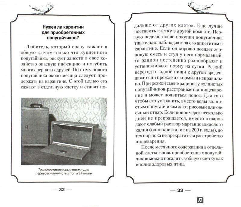 Иллюстрация 1 из 12 для Волнистые попугайчики. Уход и содержание - Александр Рахманов | Лабиринт - книги. Источник: Лабиринт