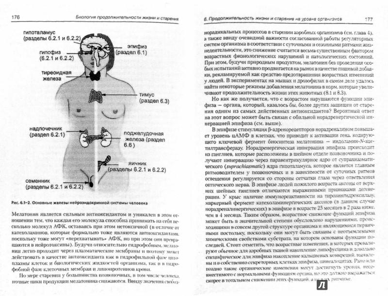 Иллюстрация 1 из 14 для Биология продолжительности жизни и старения - Алексей Голубев | Лабиринт - книги. Источник: Лабиринт