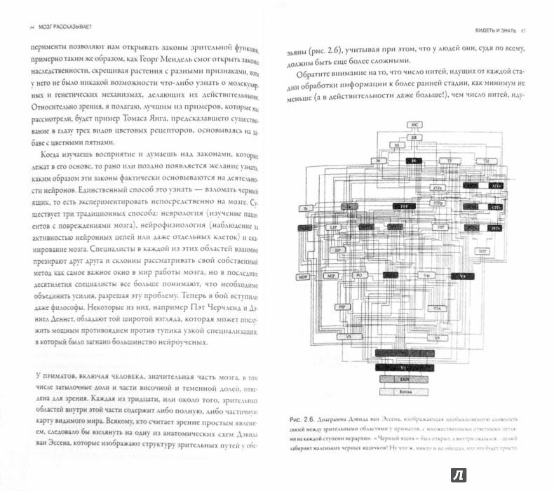 Иллюстрация 1 из 35 для Мозг рассказывает. Что делает нас людьми - Вилейанур Рамачандран | Лабиринт - книги. Источник: Лабиринт