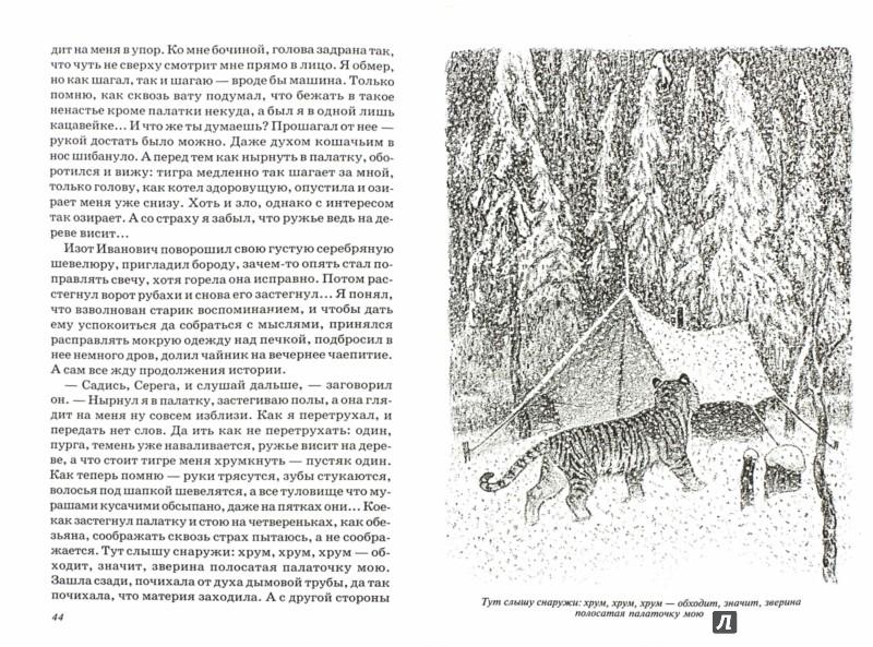 Иллюстрация 1 из 25 для Встречи с амурским тигром - Сергей Кучеренко | Лабиринт - книги. Источник: Лабиринт