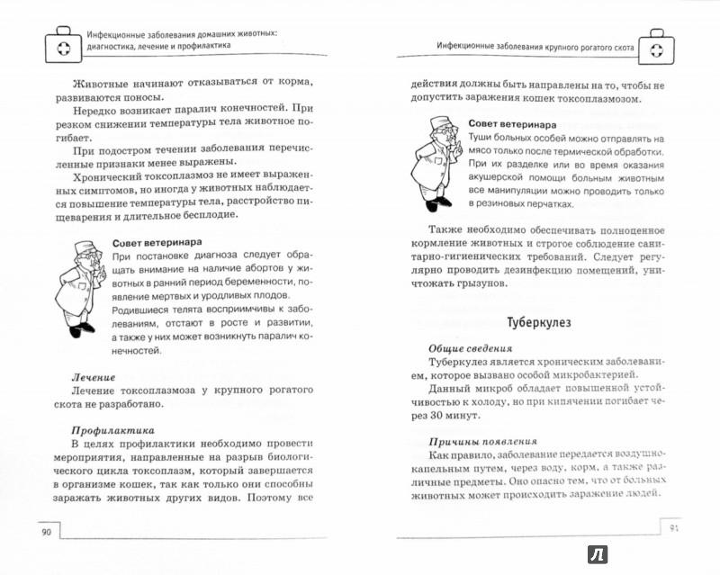 Иллюстрация 1 из 5 для Инфекционные заболевания домашних животных. Диагностика, лечение и профилактика - Л. Моисеенко | Лабиринт - книги. Источник: Лабиринт