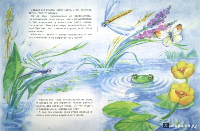 Иллюстрация 1 из 16 для Рождение лягушонка - Лариса Тарасенко | Лабиринт - книги. Источник: Лабиринт