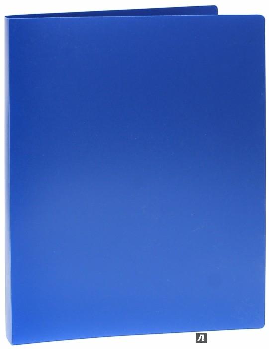 Иллюстрация 1 из 5 для Папка на кольцах BASIC синяя (2 кольца) (255070-02) | Лабиринт - канцтовы. Источник: Лабиринт