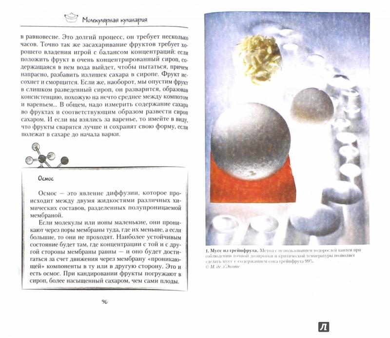 Иллюстрация 1 из 7 для Молекулярная кулинария. Новые сенсационные вкусы в еде - Рафаэль Омонт | Лабиринт - книги. Источник: Лабиринт