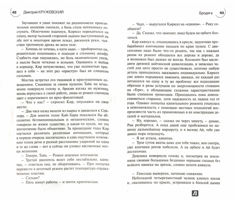 Иллюстрация 1 из 13 для Бродяга - Дмитрий Кружевский | Лабиринт - книги. Источник: Лабиринт