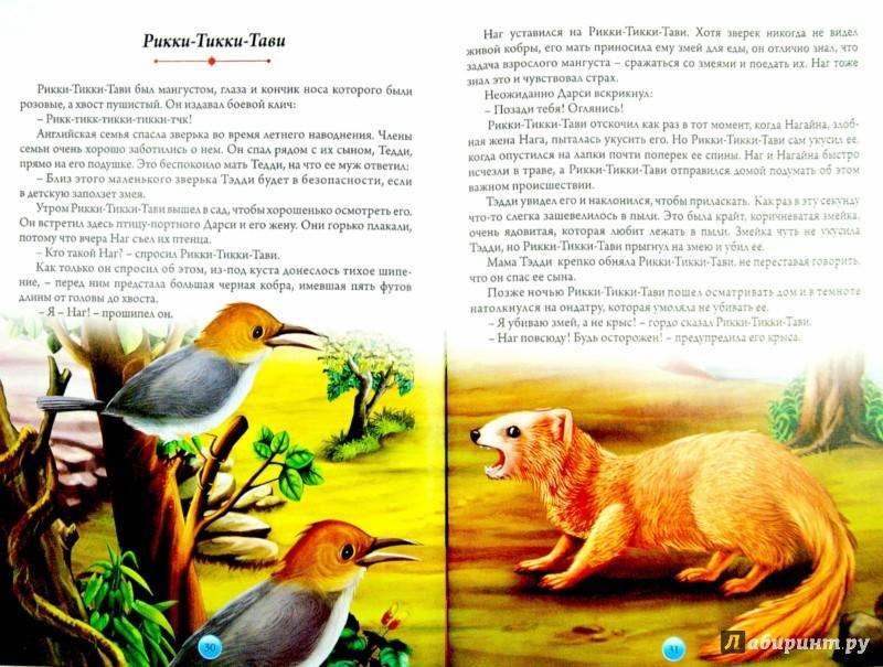 Иллюстрация 1 из 9 для Книга джунглей - Редьярд Киплинг | Лабиринт - книги. Источник: Лабиринт