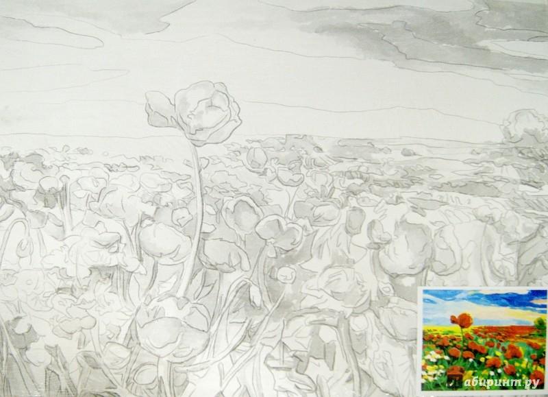 """Иллюстрация 1 из 7 для Холст грунтованный на картоне с контуром """"Маки"""" (30х40 см) (190629)   Лабиринт - игрушки. Источник: Лабиринт"""