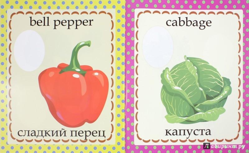 Иллюстрация 1 из 11 для Огород. Garden | Лабиринт - книги. Источник: Лабиринт