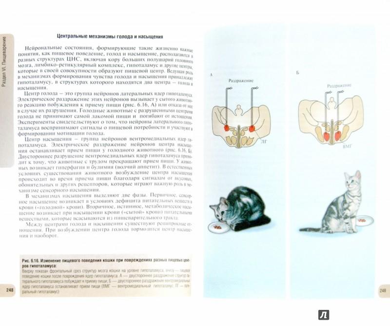 Иллюстрация 1 из 28 для Физиология человека. Атлас динамических схем. Учебное пособие - Судаков, Вагин, Андрианов, Киселев | Лабиринт - книги. Источник: Лабиринт
