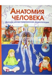 Анатомия человека. Детская иллюстрированная энциклопедия т канаван как работает твое тело детская энциклопедия