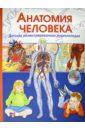 Гуиди Винченцо Анатомия человека. Детская иллюстрированная энциклопедия
