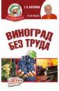 Кизима Галина Александровна Виноград без труда цена