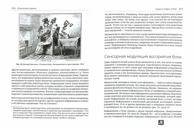 Иллюстрация 1 из 19 для Психология стресса - Роберт Сапольски | Лабиринт - книги. Источник: Лабиринт