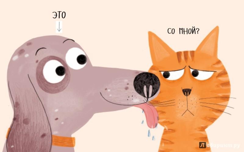 Иллюстрация 1 из 44 для Король кот - Марта Алтес | Лабиринт - книги. Источник: Лабиринт