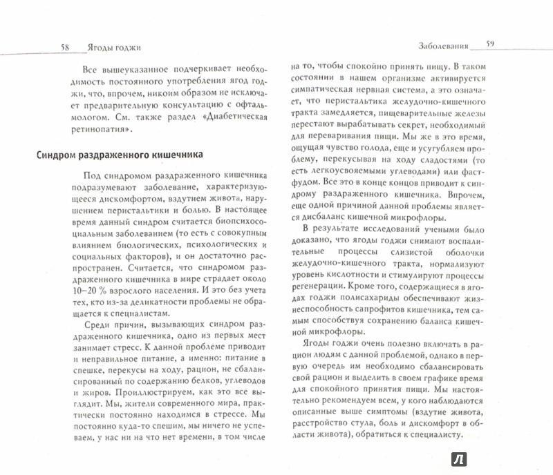 Иллюстрация 1 из 39 для Ягоды годжи. Плоды долголетия и суперздоровья - Юлия Николаева | Лабиринт - книги. Источник: Лабиринт