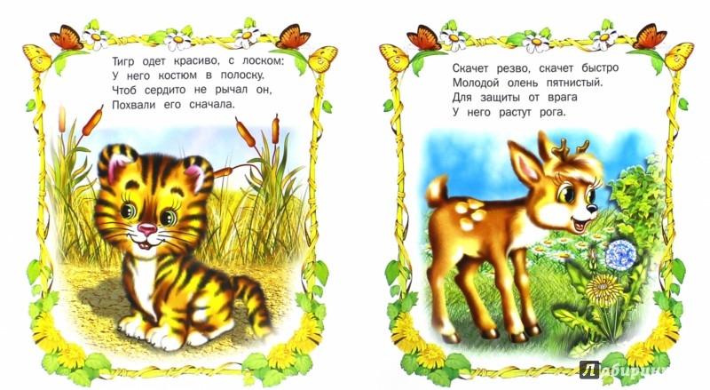 Иллюстрация 1 из 11 для Зоопарк | Лабиринт - книги. Источник: Лабиринт